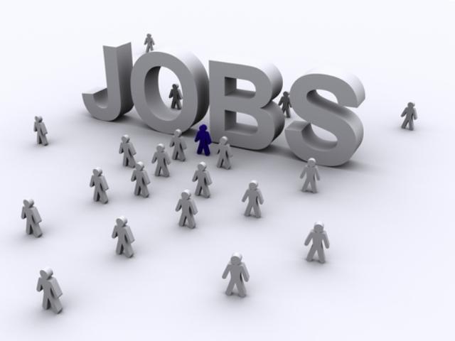 AJOFM Hunedoara organizează în data de 25 octombrie o bursă a locurilor de muncă pentru meserii diverse