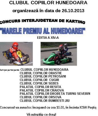 Concurs de karting la Hunedoara