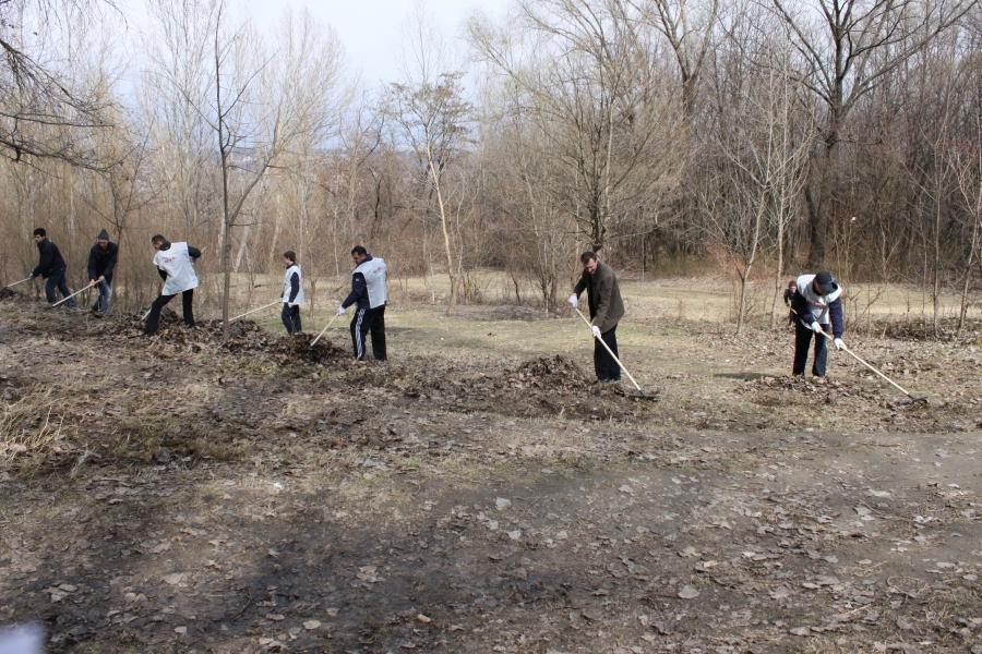 Acțiune de ecologizare în Hunedoara