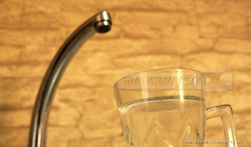 ONG-urile, îngrijorate de contaminarea apei de la Beba Veche și împrejurimi