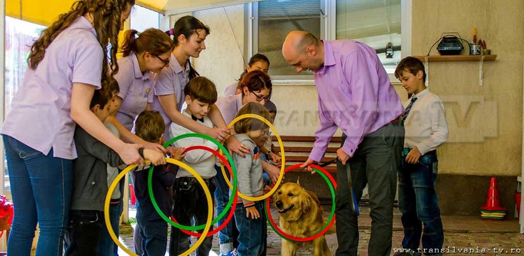 Program inedit realizat de un psiholog român: Delfinoterapie și terapie canină pentru copiii cu autism