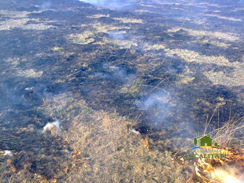 Sfaturi pentru prevenirea incendiilor de vegetație