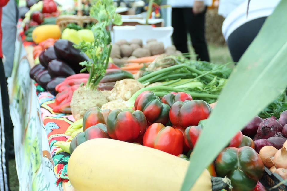 Ziua Recoltei (Cristur, 23-25 septembrie). Vezi programul evenimentului