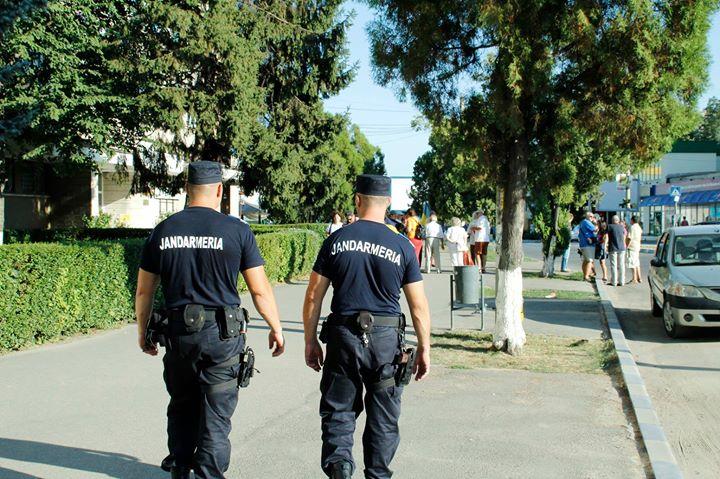 Bărbat din Deva amendat de jandarmi, pentru că și-a lăsat câinele nesupravegheat pe stradă