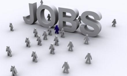 901 locuri de muncă vacante în Spațiul Economic European