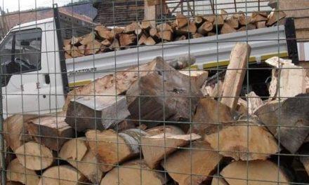 Lemn confiscat de jandarmii montani din Hunedoara