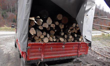 Amendă de 3.000 de lei, aplicată în Crișcior, pentru un șofer care transporta material lemnos