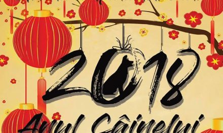 Anul Nou Chinezesc, sărbătorit la Deva