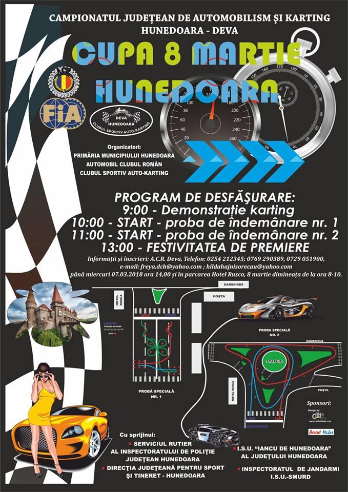 Competiții de automobilism și karting organizate în Hunedoara