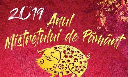 Trecerea în Anul Nou Chinezesc, sărbătorită în Deva