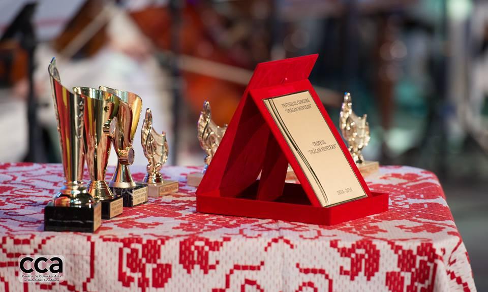 """Festivalul Concurs """"Drăgan Muntean"""", la a VIII-a ediție"""